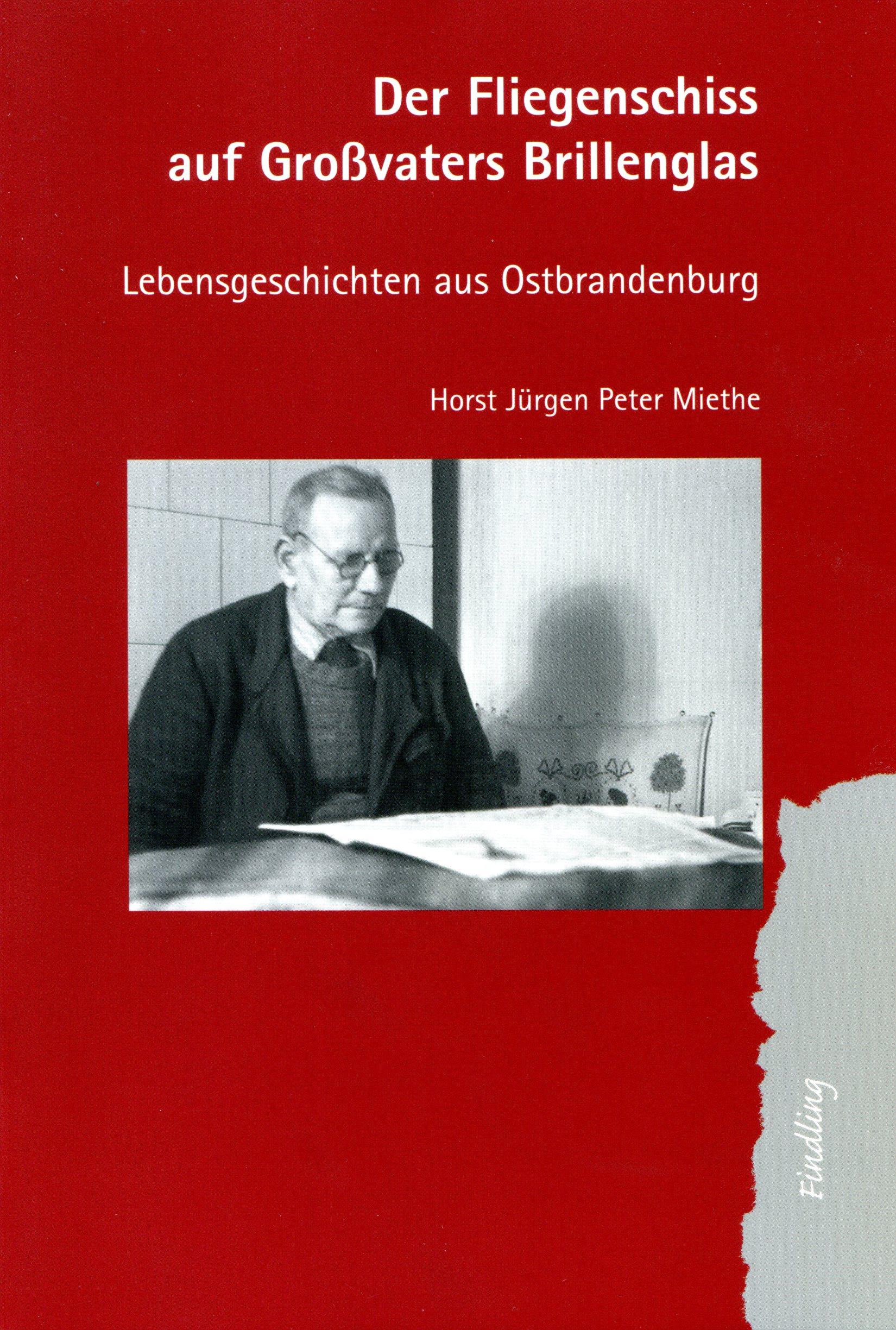Cover Buchvorlage - Der Brillenschiss